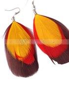 Nowe Egzotyczne kolczyki piórka