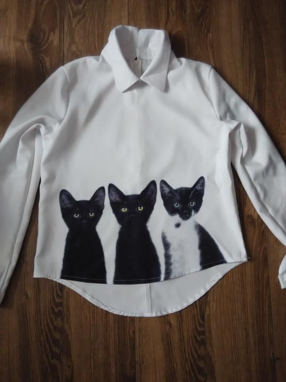 koszula długi rękaw koty kotki na zamek 38 M unika