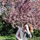 Wiosna w Opolu