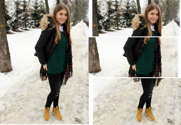 Blogerek Krótka kurteczka
