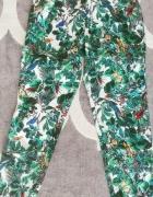 Spodnie zielone w ptaki xs Medicine...