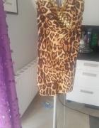 Sukienka 36 S olowkowa panterka...