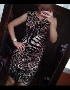 Sukienka panterka...