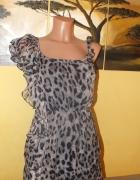 Sukienka w panterkę AX Paris 38 10 M
