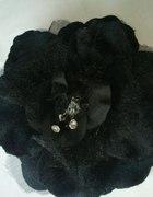 Piękny czarny kwiat