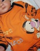 bluzeczka tygrysek disney