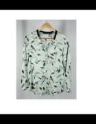 koszula Zara birds jaskółki