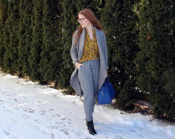 Blogerek Szarość z panterką