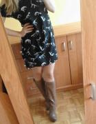 Croop sukienka dinozaury xs