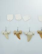 Nowy wisiorek zawieszka z zęba rekina ząb rekina UNISEX