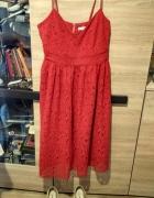 sukienka koronkowa XL...