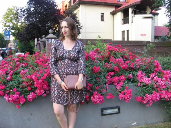 Blogerek Sukienka w motylki wśród róż