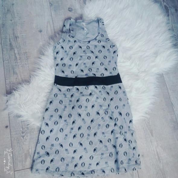 Sukienka na lato w sowy...
