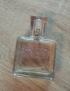 Perfumy damskie przepiękny kobiecy zapach