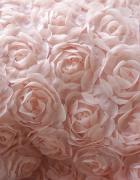 Odkupię róże 3d sukienkkę spódniczkę bluzkę poszewkę materiał