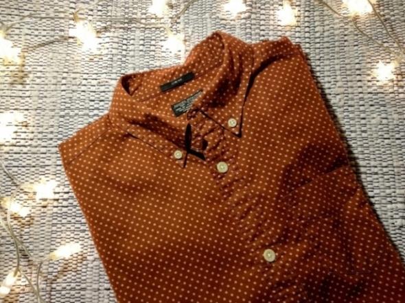 AllSaints Brązowa koszula w drobny wzór kropeczki groszki