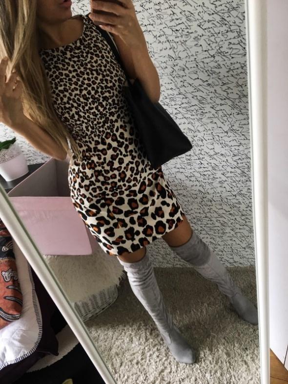 Cudna sukienka panterkowa