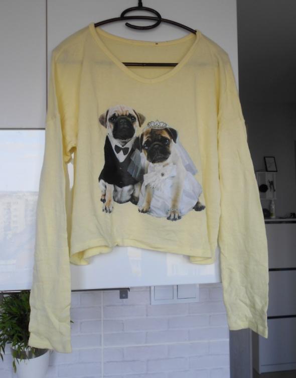 Asos żółty cienki sweter mopsy print pug...