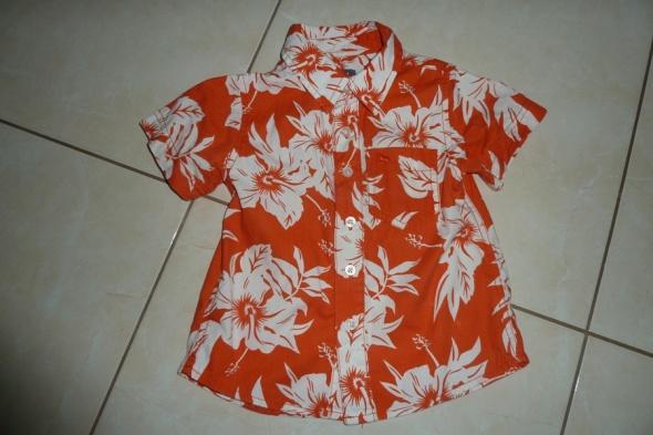 Koszulki, podkoszulki koszula HM 86