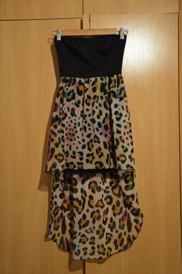 sukienka panterka dłuższy tył XS