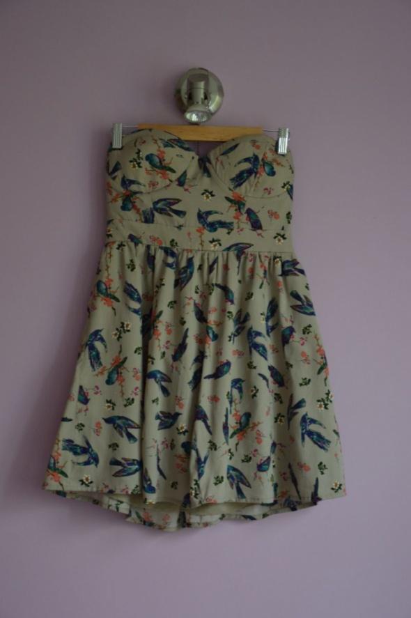 sukienka w ptaszki