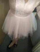 sukienka princesska lou koronka pudrowy róż