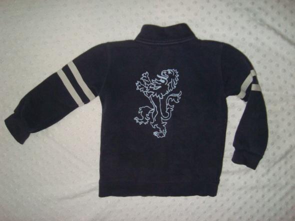 bluza dla chłopca ze smokiem na plecach