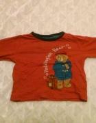 Bluzka czerwona miś paddington...