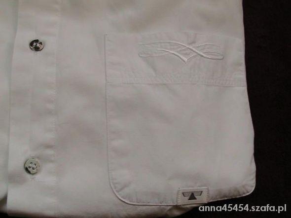 koszula męska the shirt factory 3839 m w Koszule Szafa.pl