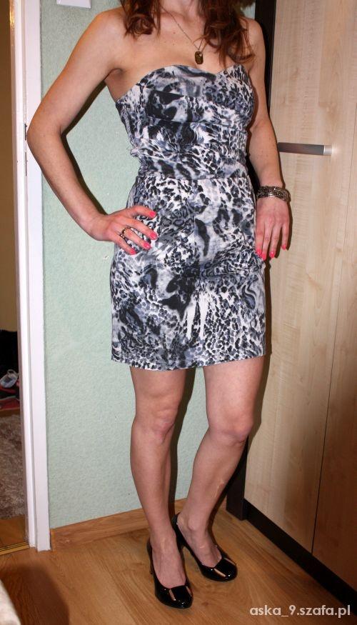 Sukienka panterka tulipan gorsetowa bombka lipsy...