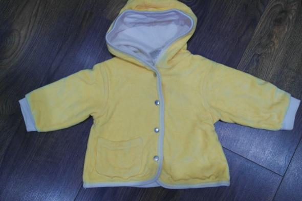 Bluza cytrynowa 62