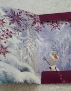Disney Frozen teczka A4 z gumką BROKAT...