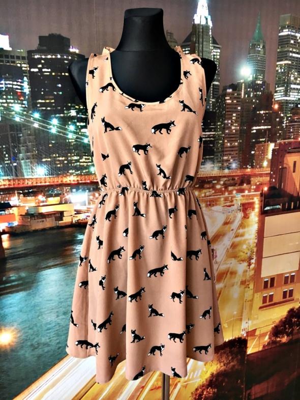 asos sukienka modny wzór lisy zwiewna na co dzień hit 38