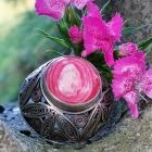 Różowy imago