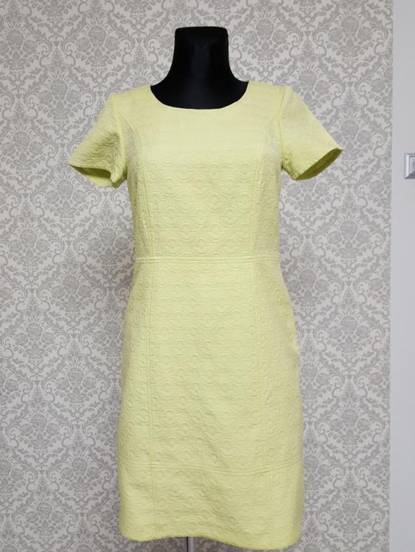 zielona sukienka Jansen...