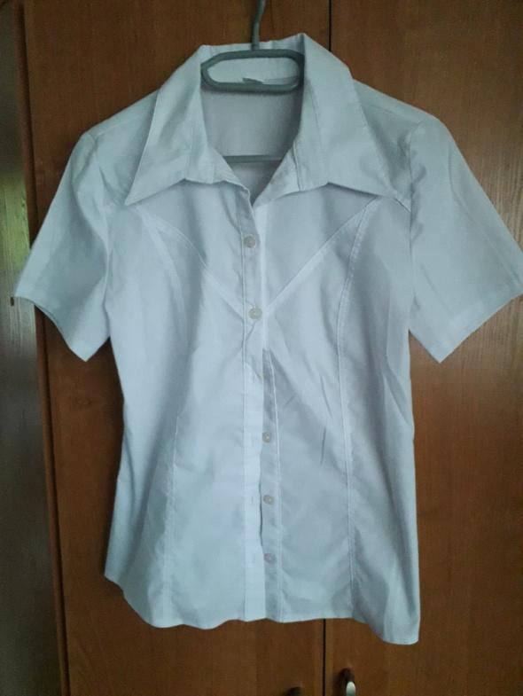 koszula elegancka krótki rękaw