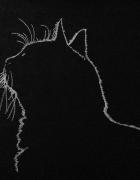 Bluzka z wyhaftowanym kotem Haft maszynowy Rozm 40 42...
