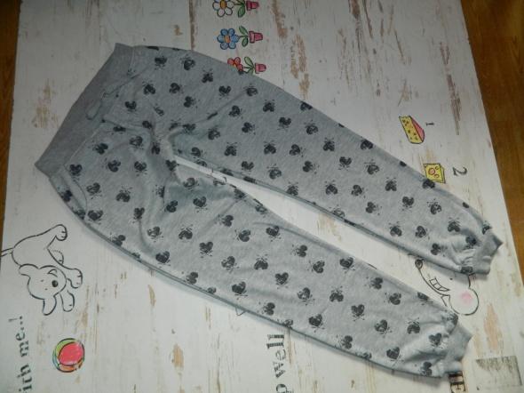 Dresy Spodnie dresowe SERCA roz 12 lat