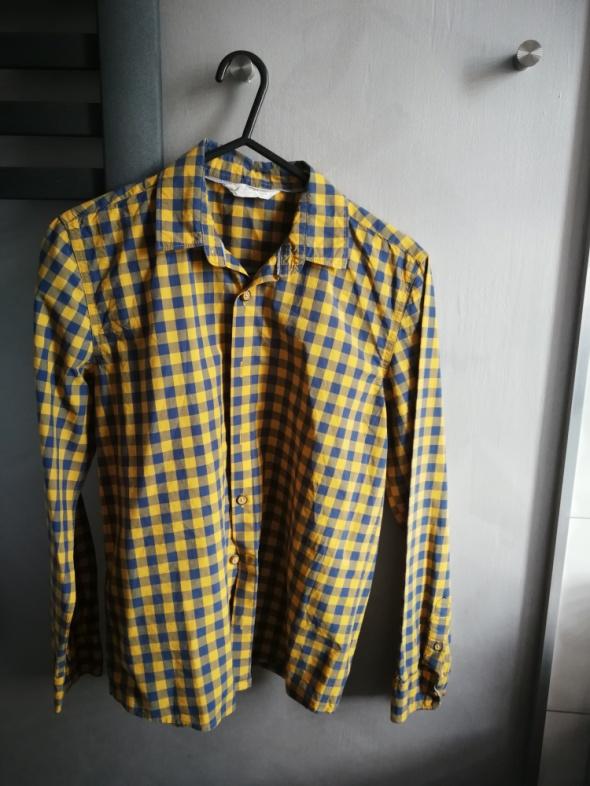 Chłopięca koszula Mango...
