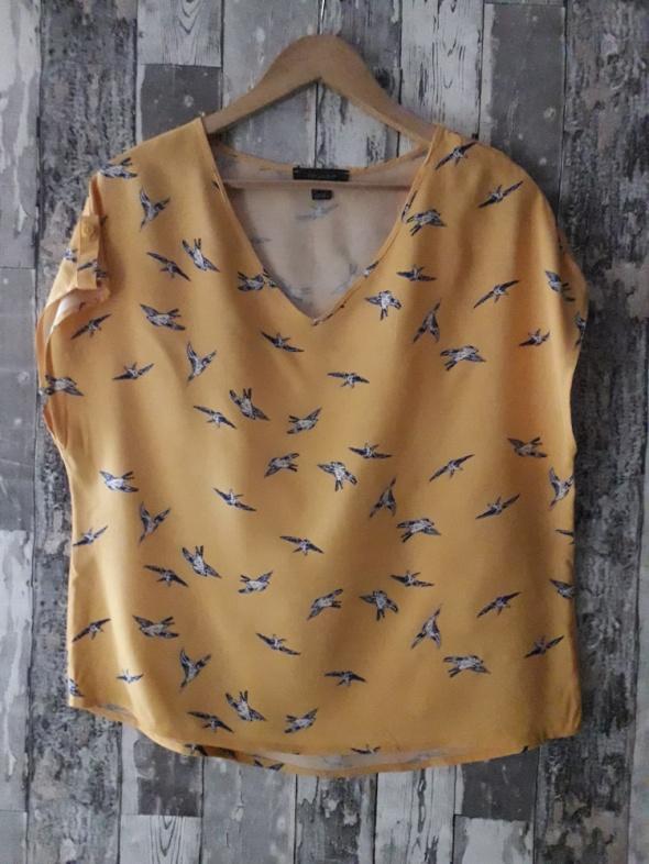 Bluzki Primark musztardowa bluzka ptaki