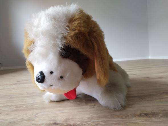 Duży pluszowy pies bernardyn miś...