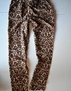 Spodnie Divided H&M r 38 w panterkę Cętki panterka luźne