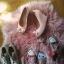 Używane buty trampki balerinki szpilki fetysz converse