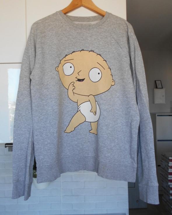 Bluzy Cedarwood State szara bluza Family Guy print nadruk