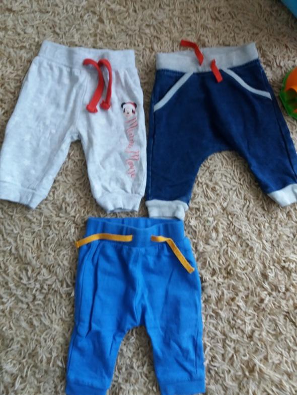 Spodnie dresowe chłopiec