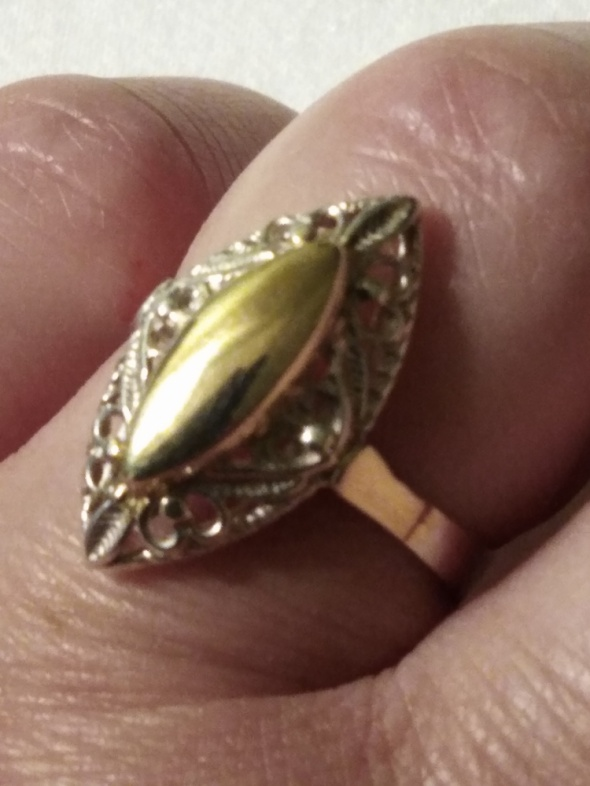 Srebrny złocony