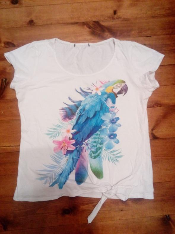 Koszulka z papugą L XL...