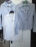 3 koszule biznesowe Classic S M Zara H&M Strad...