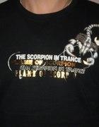 Super koszulka na jesień