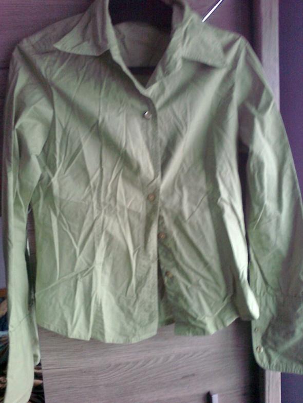 pistacjowa koszula greenpoint...